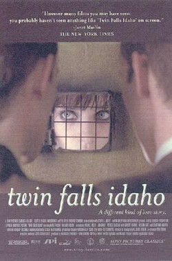 双子的天空 Twin Falls Idaho (2000)