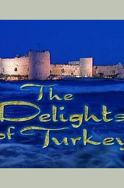 土耳其的欣喜 The Delights of Turkey