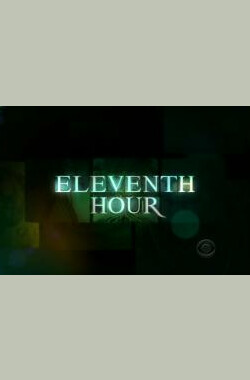 """Eleventh Hour"" 1.9 Flesh (2008)"