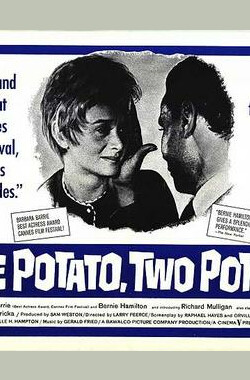 天伦泪 One Potato, Two Potato (1964)