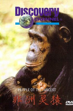 People of the Forest: The Chimps of Gombe (1988)