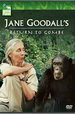 重返贡比 Jane Goodall's Return to Gombe (2006)