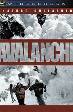 零下911 Nature Unleashed: Avalanche (2004)