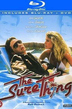 校门外 The Sure Thing (1985)