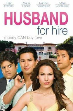 租赁情缘 Husband for Hire (2008)