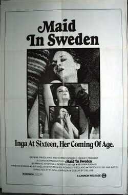 瑞典少女 Maid in Sweden (1971)