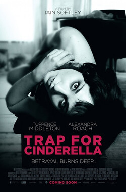 灰姑娘的陷阱 Trap for Cinderella (2013)