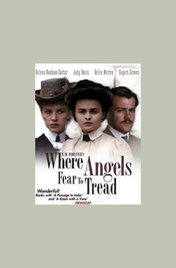 天使不敢驻足的地方 Where Angels Fear to Tread (1991)