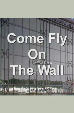 Come Fly on the Wall (2011)
