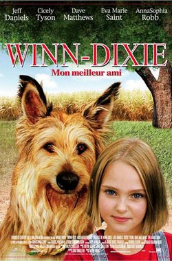 都是戴茜惹的祸 Because of Winn-Dixie (2005)
