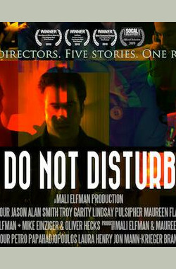 请勿打扰 Do Not Disturb (2009)