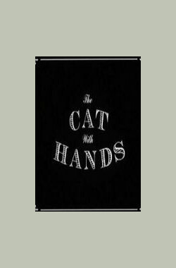 长手的猫 the cat with hands