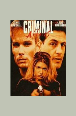 Criminal Affairs (1998)