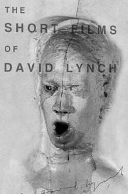 大卫林奇短片集 The Short Films of David Lynch (2002)