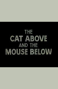 汤姆猫演唱会 The Cat Above and the Mouse Below (1964)