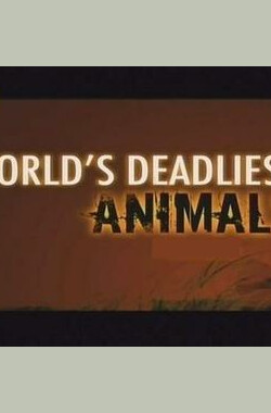 世界致命动物亚马逊篇 National Geographic World's Deadliest Animals Amazon (2009)