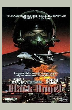 黑天使的坠落 Flight of Black Angel (1991)