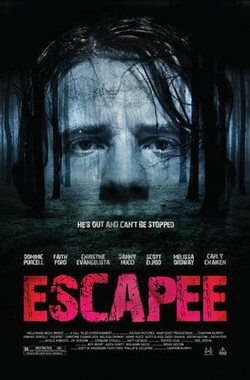 逃犯 Escapee (2011)