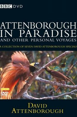鸟的天堂 Attenborough in Paradise (1996)