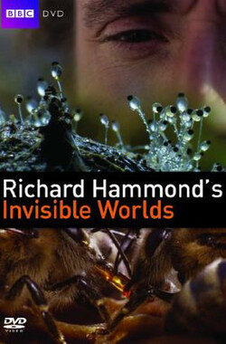 理查德·哈蒙德:看不见的世界 Richard Hammond's Invisible Worlds (2010)