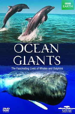海洋巨物 BBC: Ocean Giants (2011)