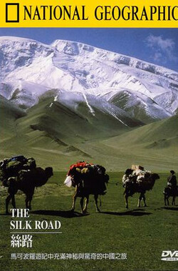丝路 Treasure Seekers: The Silk Road (2001)