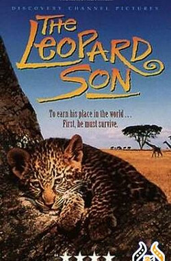 花豹家族 The Leopard Son (1996)