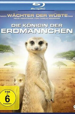 蒙哥一家的故事 Meerkat Manor: The Story Begins (2008)