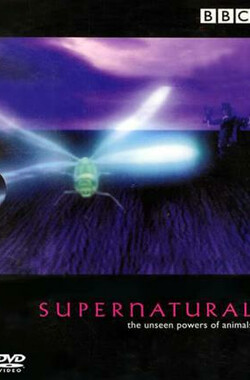 超自然力量 BBC.Supernatural: The Unseen Powers of Animals (1999)