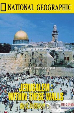 饱受劫难的圣城 Jerusalem: Within These Walls (1986) (1986)