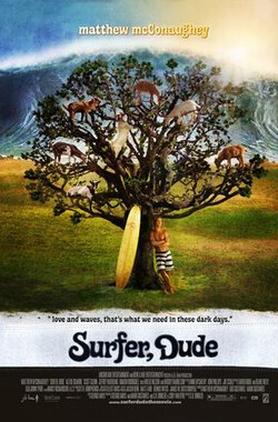 冲浪好手 Surfer, Dude (2008)