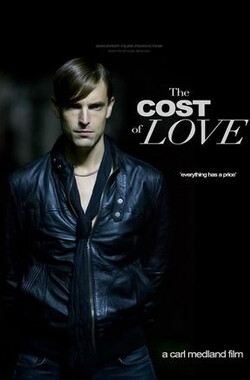 爱情代价 The Cost of Love (2010)