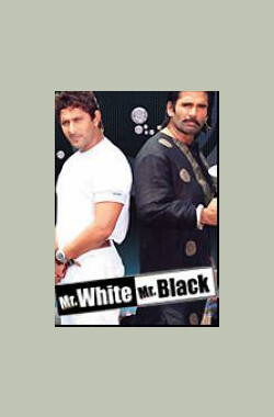 白先生黑先生 Mr. White Mr. Black (2008)
