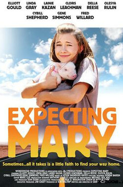 等待玛丽 Expecting Mary (2010)