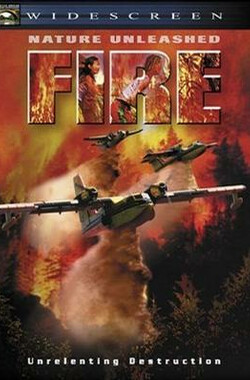 烈火无情 Nature Unleashed: Fire (2004)
