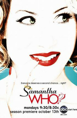 第二人生 第二季 Samantha Who? Season 2 (2008)