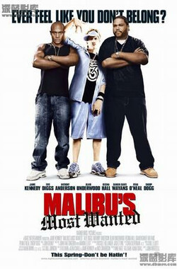 马里布绑票案 Malibu's Most Wanted (2003)