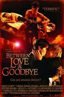爱与分手间 between love and goodbye (2009)