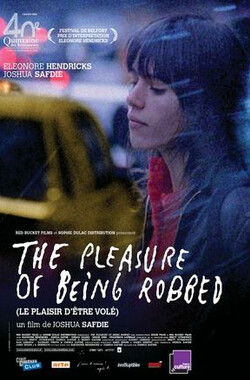 抢劫的乐趣 The Pleasure of Being Robbed (2008)