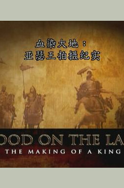 血染之地:王的诞生 Blood on the Land: The Making of a King (2005)