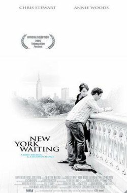 相约纽约 New York waiting (2006)