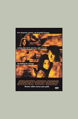 疾走黑豹 Black Cat Run (TV) (1998)