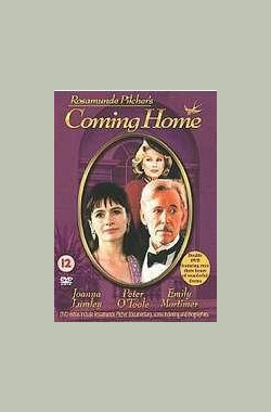 爱如潮水 Coming Home (TV) (1998)