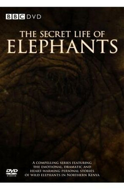 BBC-大象的别样世界 BBC-The Secret Life of Elephants (2009)