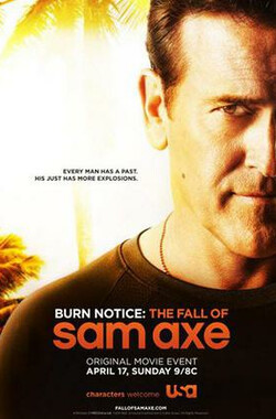 萨姆的堕落 The Fall of Sam Axe (2011)