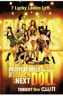 PCD小野猫之寻找下一只小野猫 Pussycat Dolls: The Search for the Next Doll (2007)
