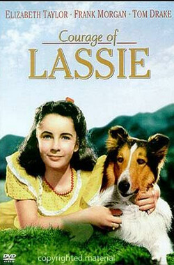 战火历险记 Courage of Lassie (1946)
