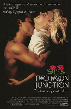 激情交叉点 Two Moon Junction (1988)