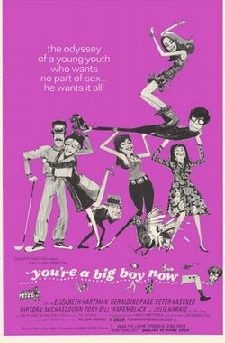 如今你已长大 You're a Big Boy Now (1966)