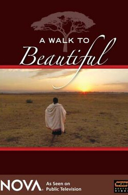 走向美丽 A Walk to Beautiful (2007)